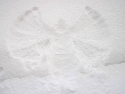 andel ve snehu