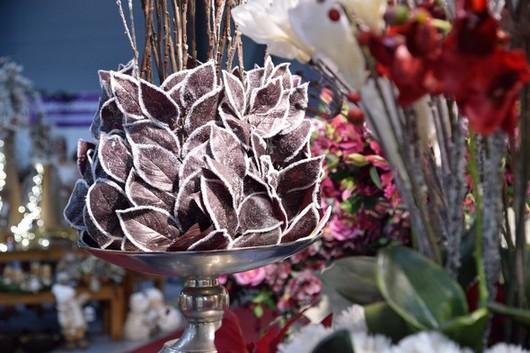 floristicka soutez ROSA PRAGENSIS